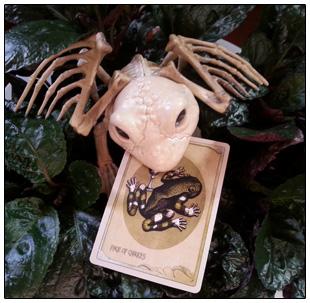 The Attic Shoppe Trading Company Tarot