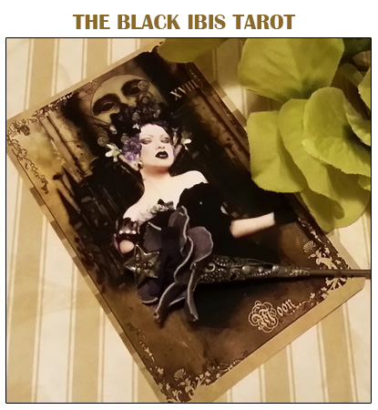 The Black Ibis Tarot by Bethalynne Bajema - The Attic Shoppe Trading Company