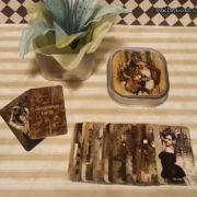 The Attic Shoppe Black Ibis Mini Tarot Deck – Major Arcana Only